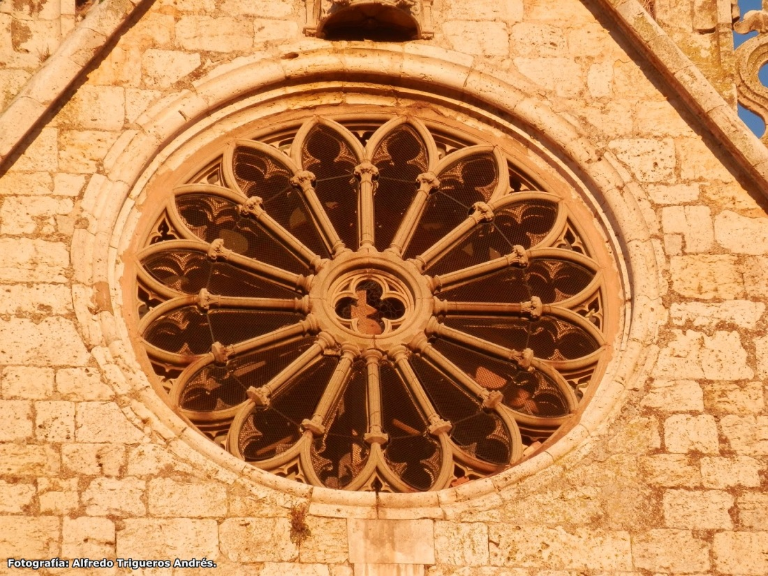Resultado de imagen de Catedral de San Antolín Palencia roseton